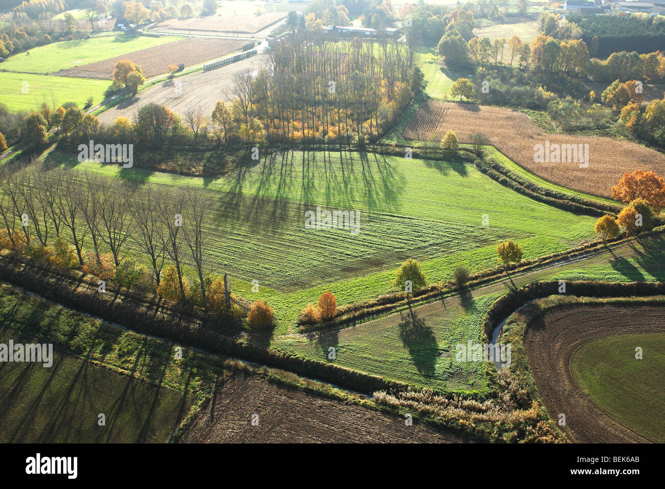 Agricultural area with fields, grasslands and hedges from the air in autumn, Belgium - Stock Image