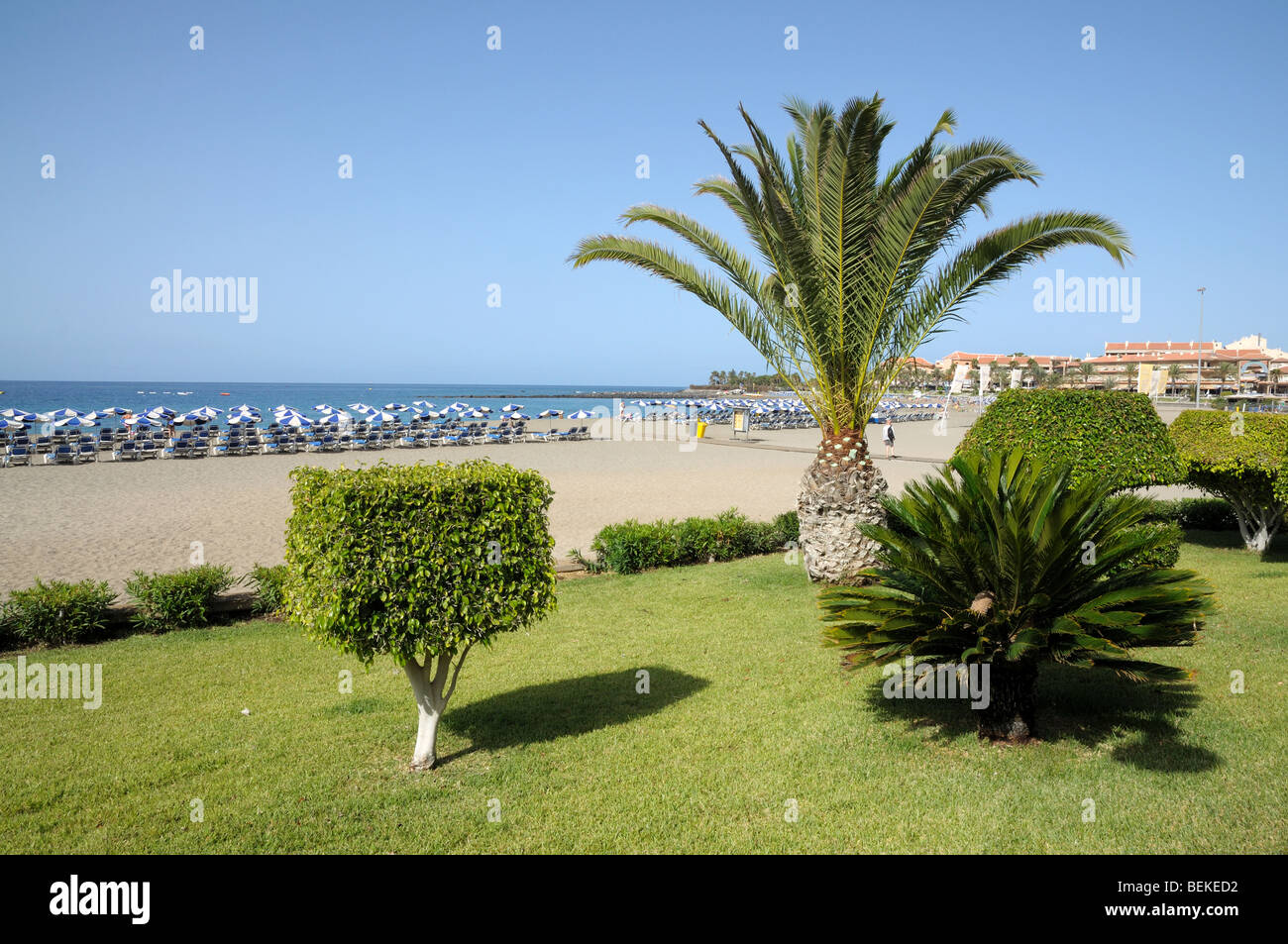 Tenerife Beach Stock Photos Tenerife Beach Stock Images Alamy