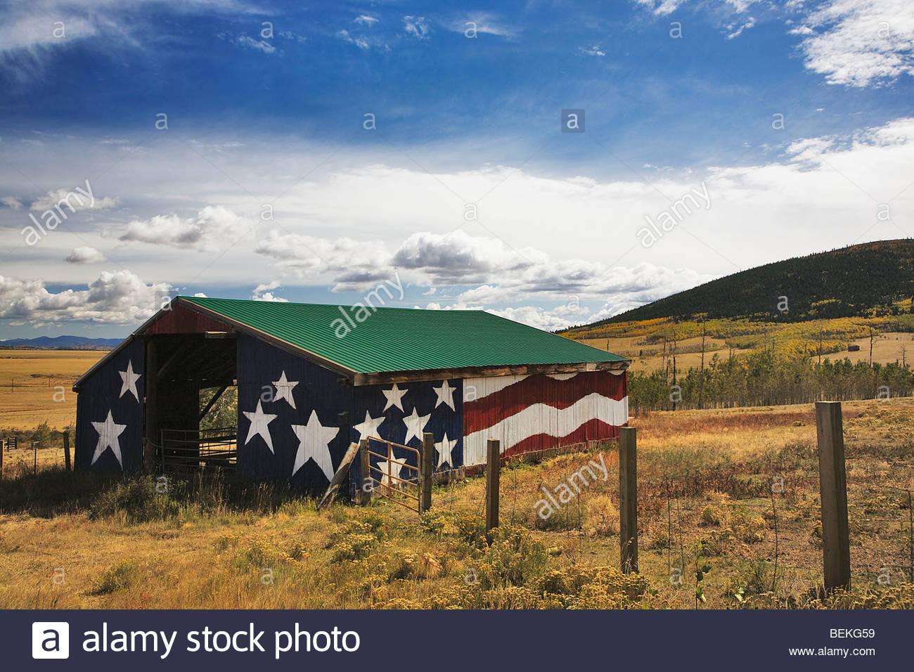 Old barn panited like American Flag in Colorado and autumn - Stock Image
