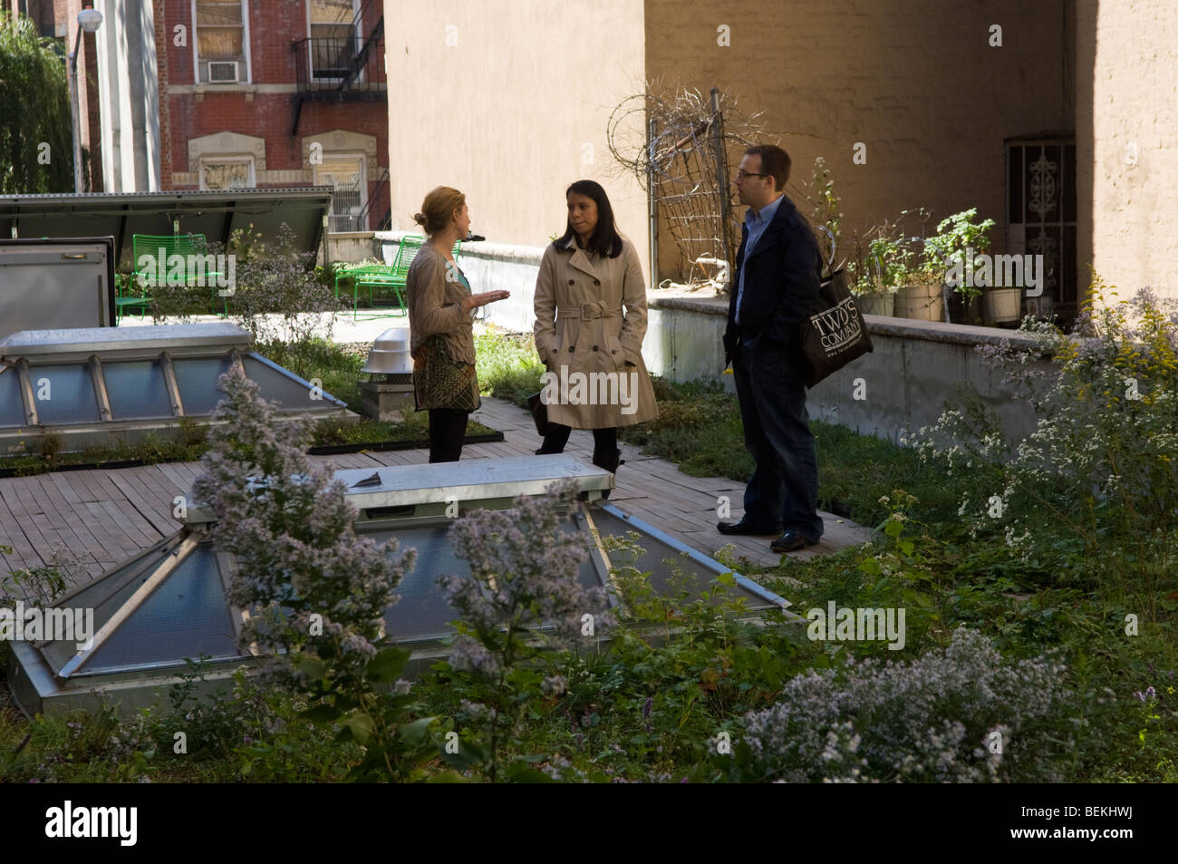 The Green Roof Of The Wild Project Theater In The East Village Stock