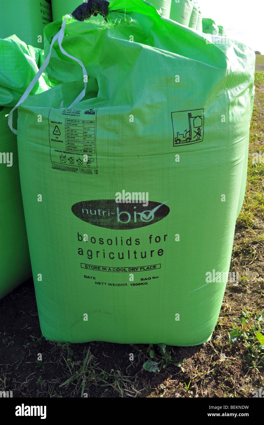 Bags of Biosolids contents derived from sewage by Nutri Bio part of Anglian Water standing in a farm field Stock Photo