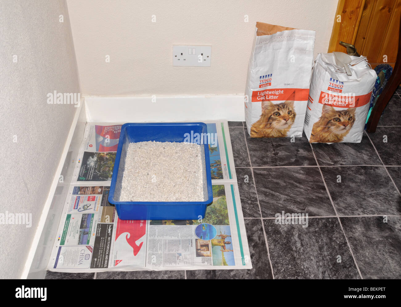 Cat litter in a tray  sitting on top of old newspaper. - Stock Image