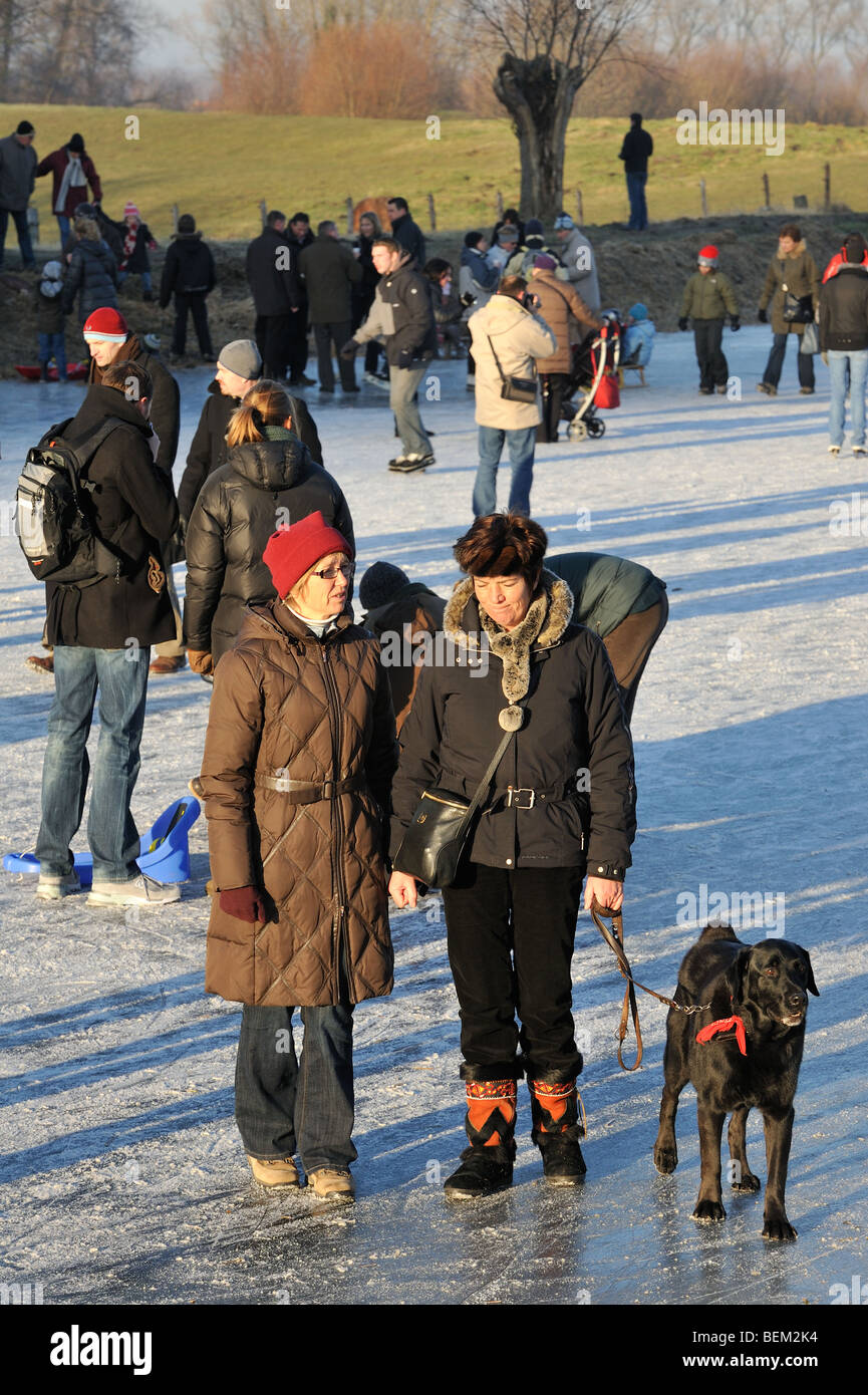Walkers with dog on leash among ice skaters on frozen canal at Damme in winter, West Flanders, Belgium - Stock Image