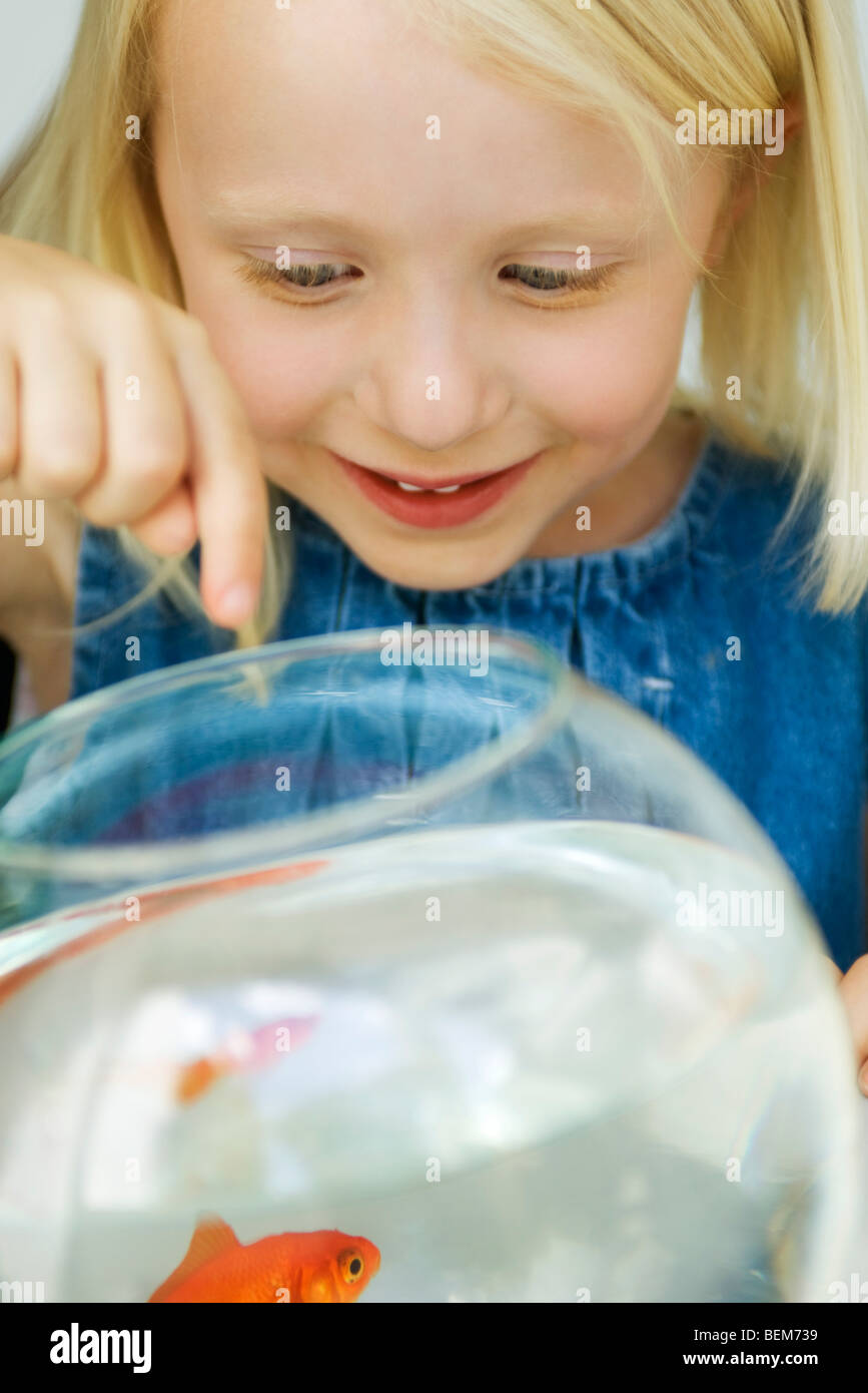 Little girl looking at goldfish in bowl - Stock Image
