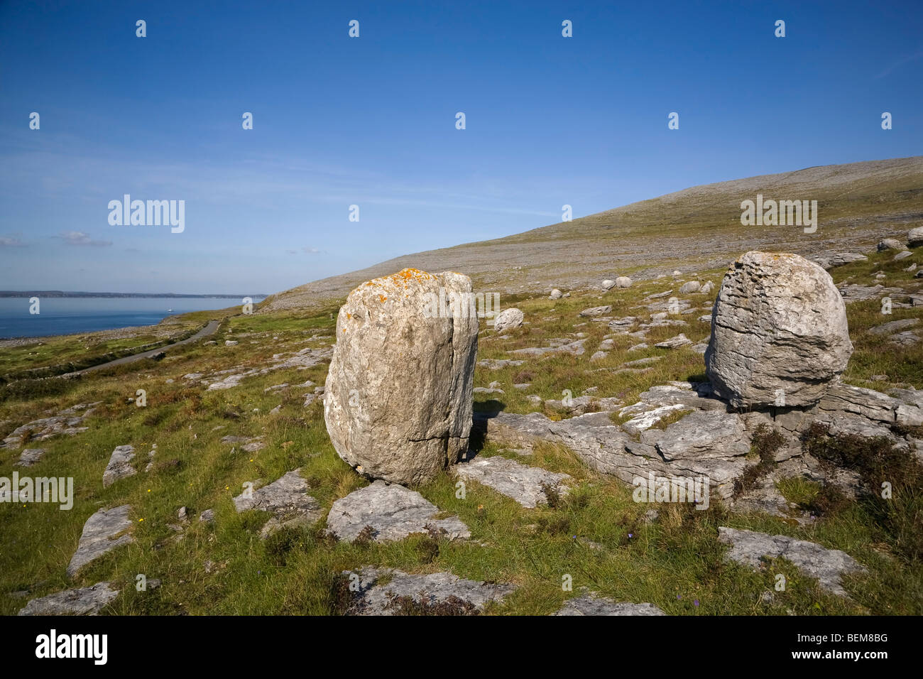 Erratics (Boulders from Glacial Action),  on The Burren, County Clare, Ireland - Stock Image