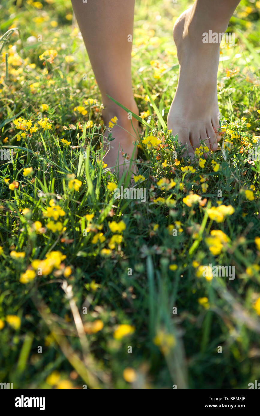 Person walking barefoot in field of wildflowers, cropped - Stock Image