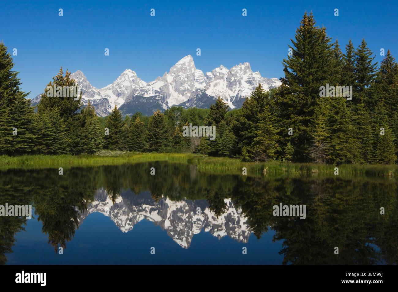Tetons Reflecting in pond, Schwabacher Landing, Grand Teton NP,Wyoming, USA - Stock Image
