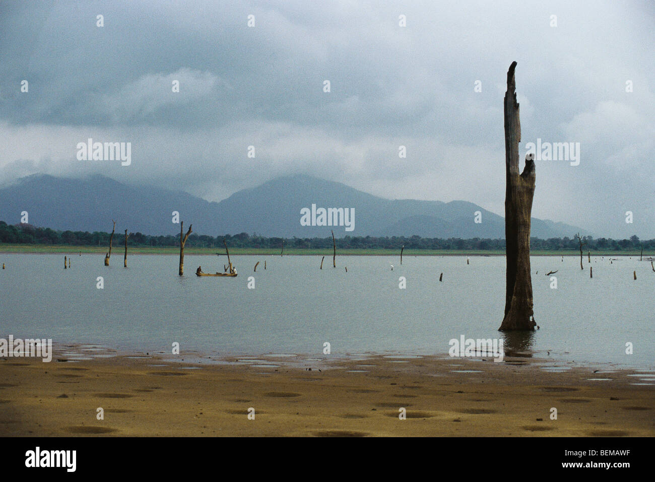 Dead trees standing in lake, fisherman in canoe in distance and mountains in background, Sri Lanka - Stock Image