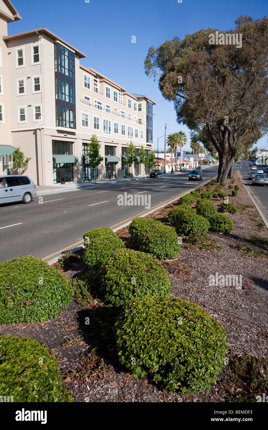 Divided road landscaping in front of mixed use housing development (multi use). Millbrae, California, United States Stock Photo