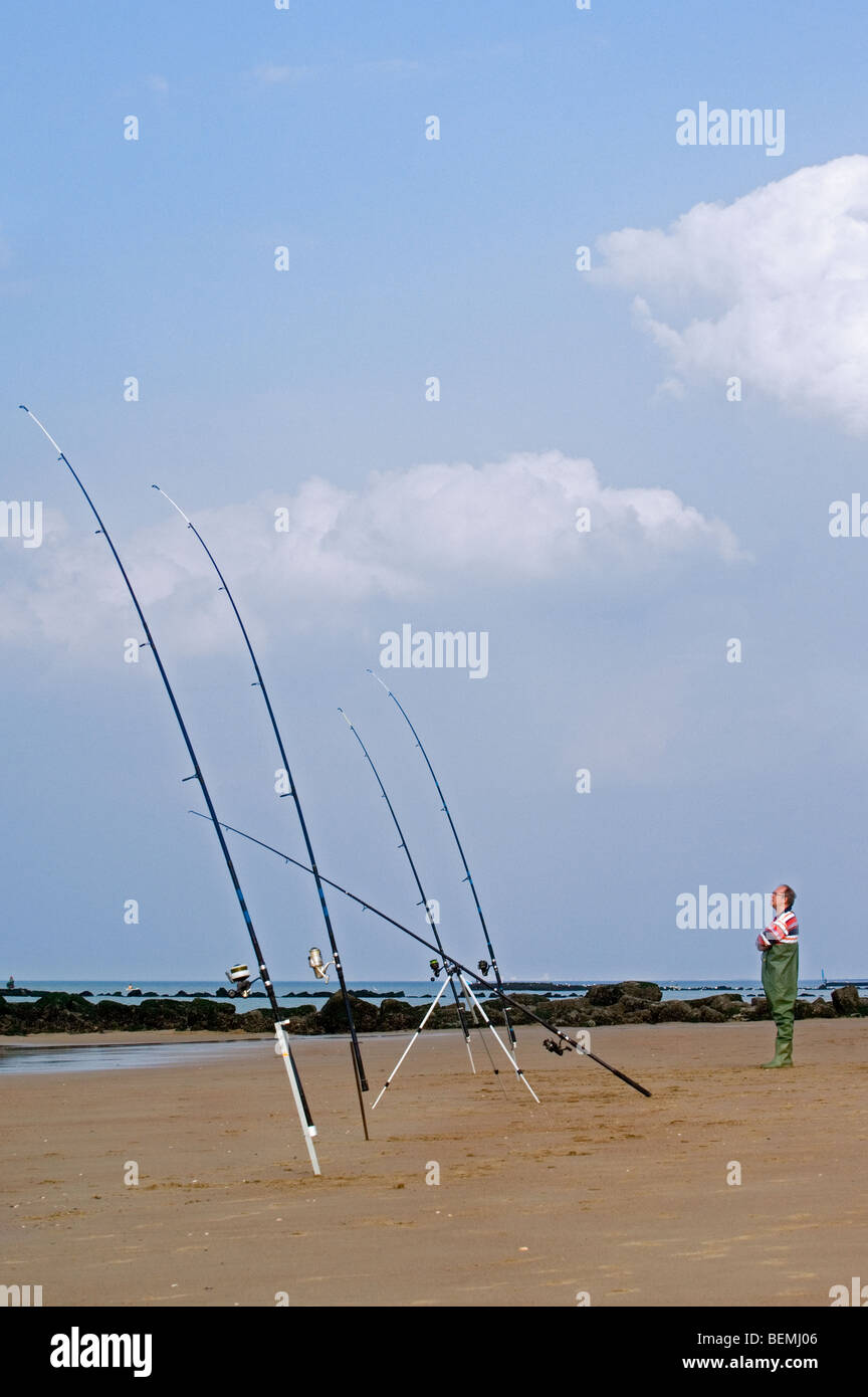 Sea angler in waders with many fishing rods fishing from beach near breakwater along the North Sea coast - Stock Image