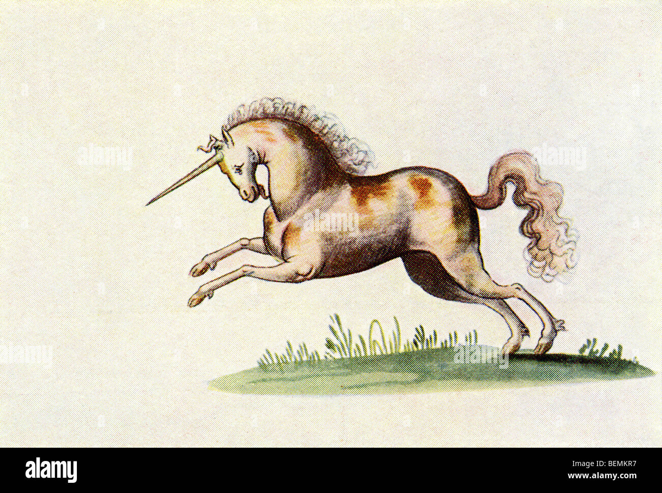 The Unicorn. After an illustration from The Livre d'Amis of Marguerite de Valois in The Illustrated London News, - Stock Image