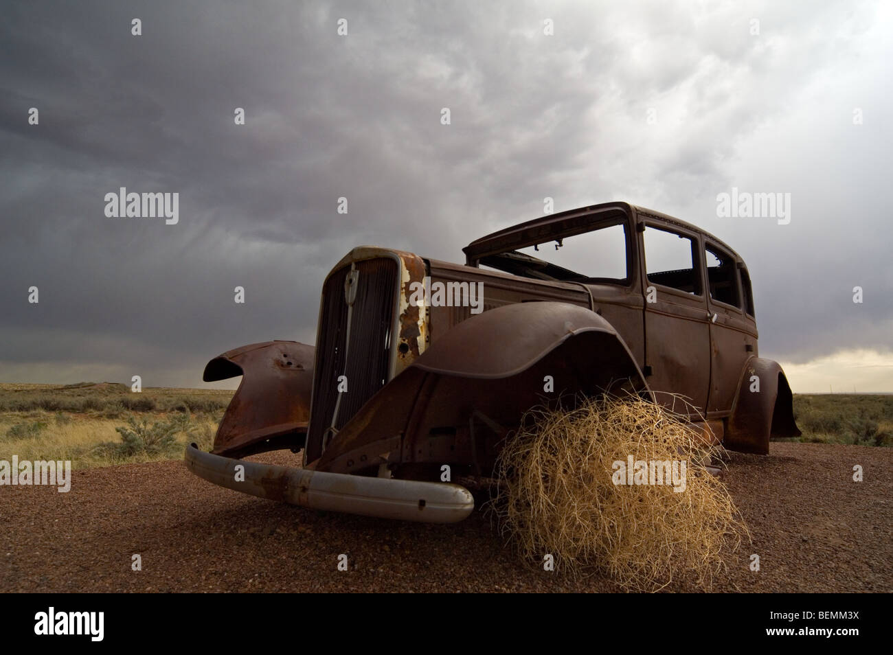 Old rusty car and Prickly Russian Thistle / Tumbleweed (Salsola tragus / Salsola iberica) Arizona, US - Stock Image