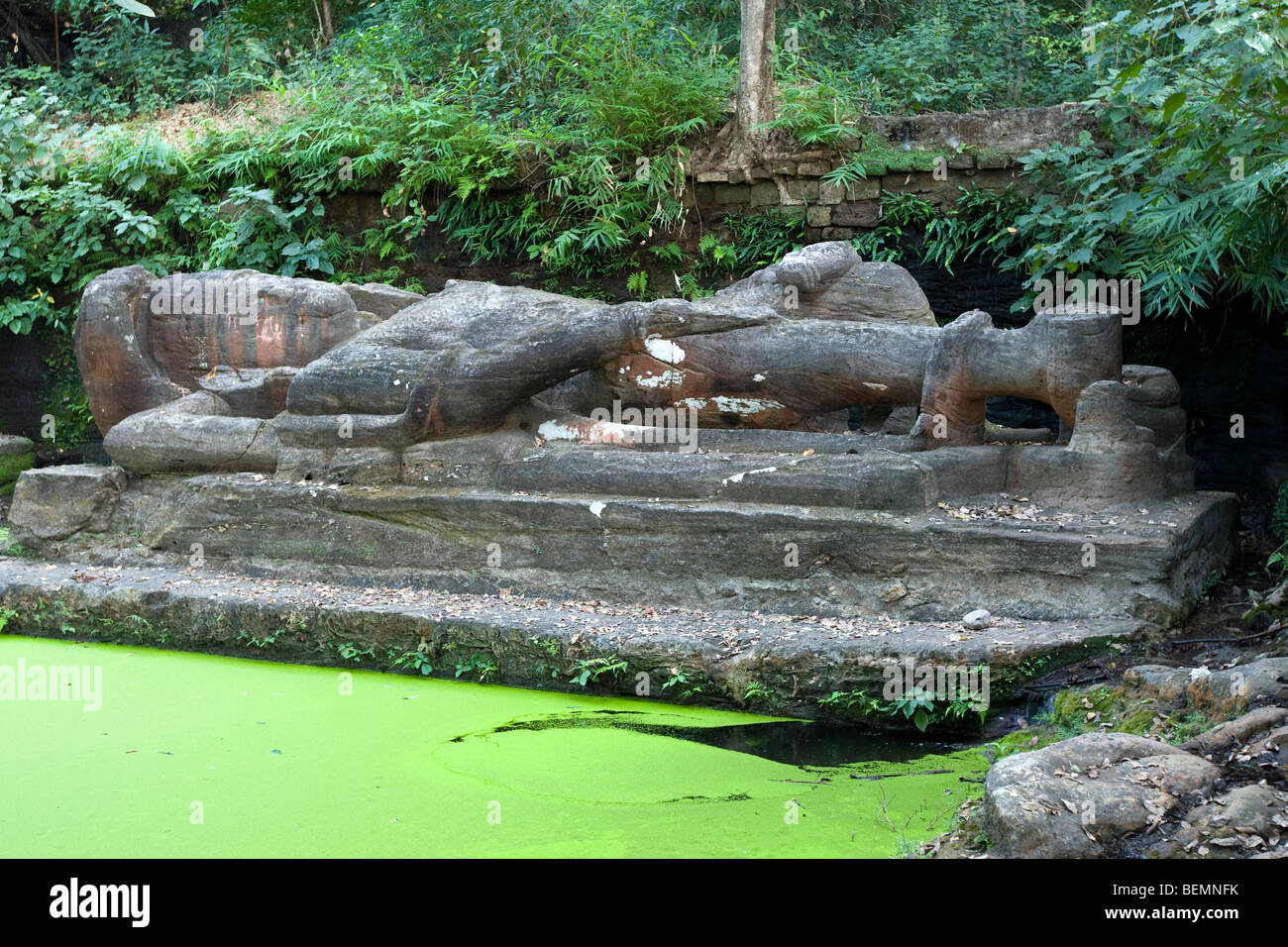 Bandhavgarh National Park India - Stock Image