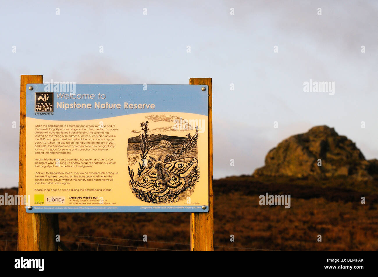 Nipstone Nature Reserve Interpretation sign Shropshire Hills England - Stock Image