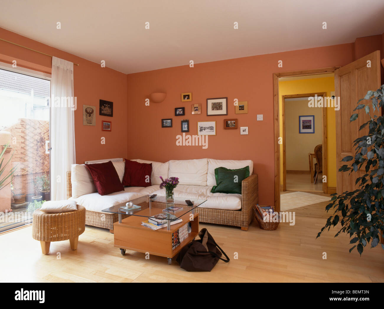 Terracotta walls living room