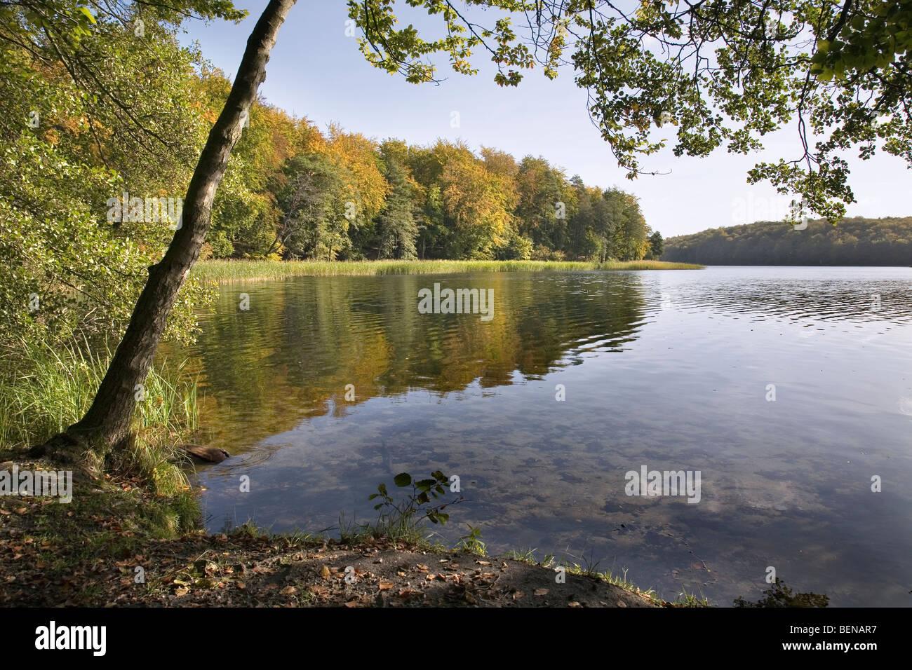 Liepnitzsee, Wandlitz, Barnim, Brandenburg, Germany - Stock Image