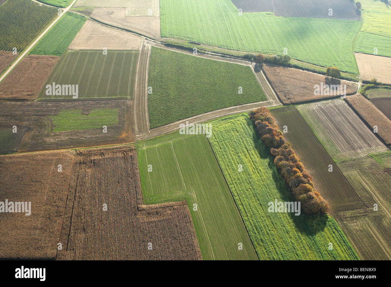 Agricultural area with fields, grasslands and hedges from the air, Belgium - Stock Image