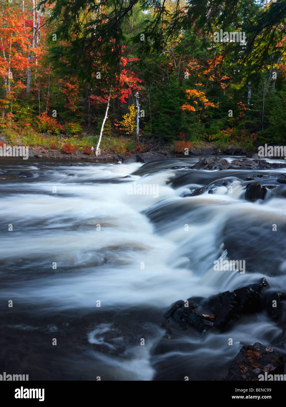 Oxtongue river. Beautiful fall nature scenery. Algonquin, Muskoka, Ontario, Canada. - Stock Image