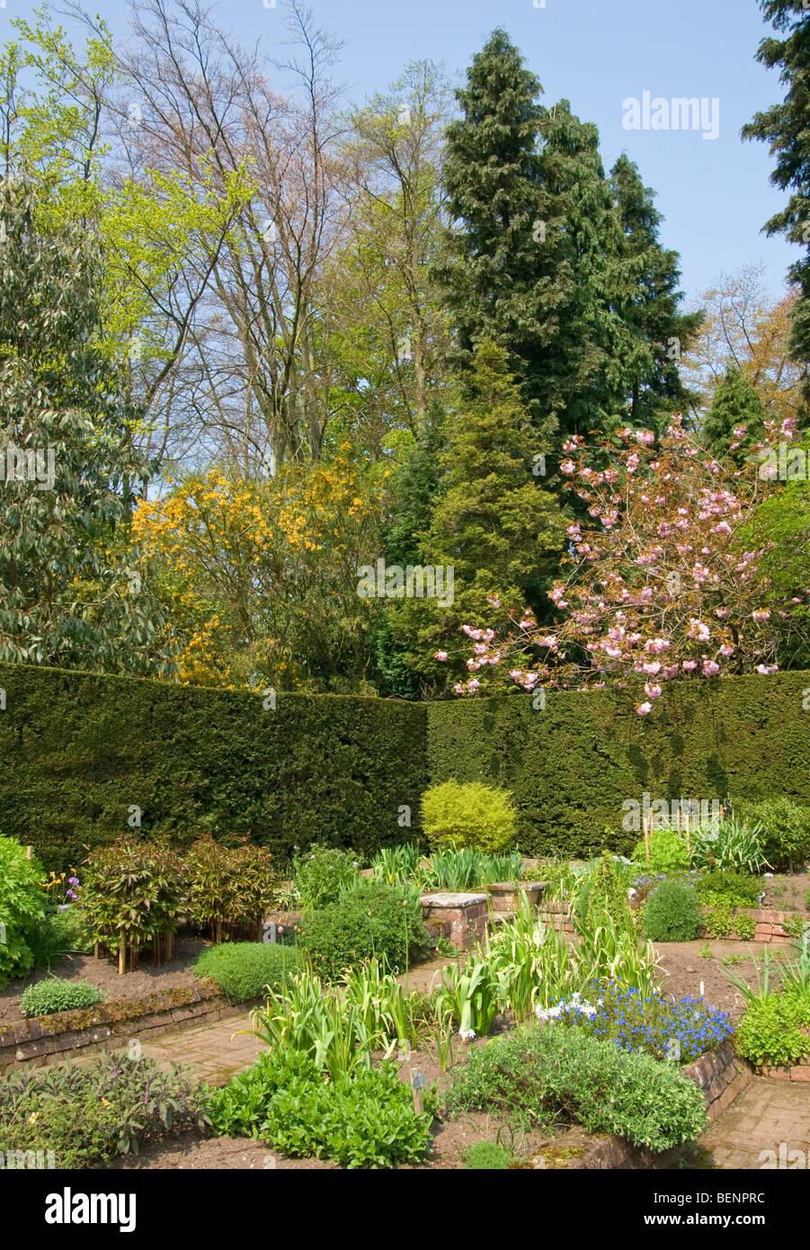 formal garden brick paths cherry blossom paeonies alliums lithodora [Newby Hall] Ripon [North Yorkshire] - Stock Image