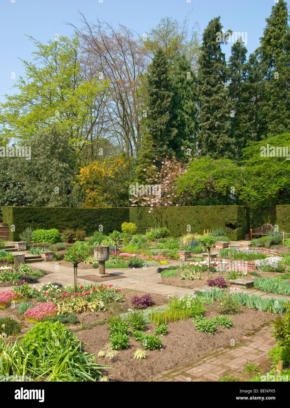 formal garden in spring urn tulips paths heuchera iris saxifrage [Newby Hall] Ripon [North Yorkshire] - Stock Image