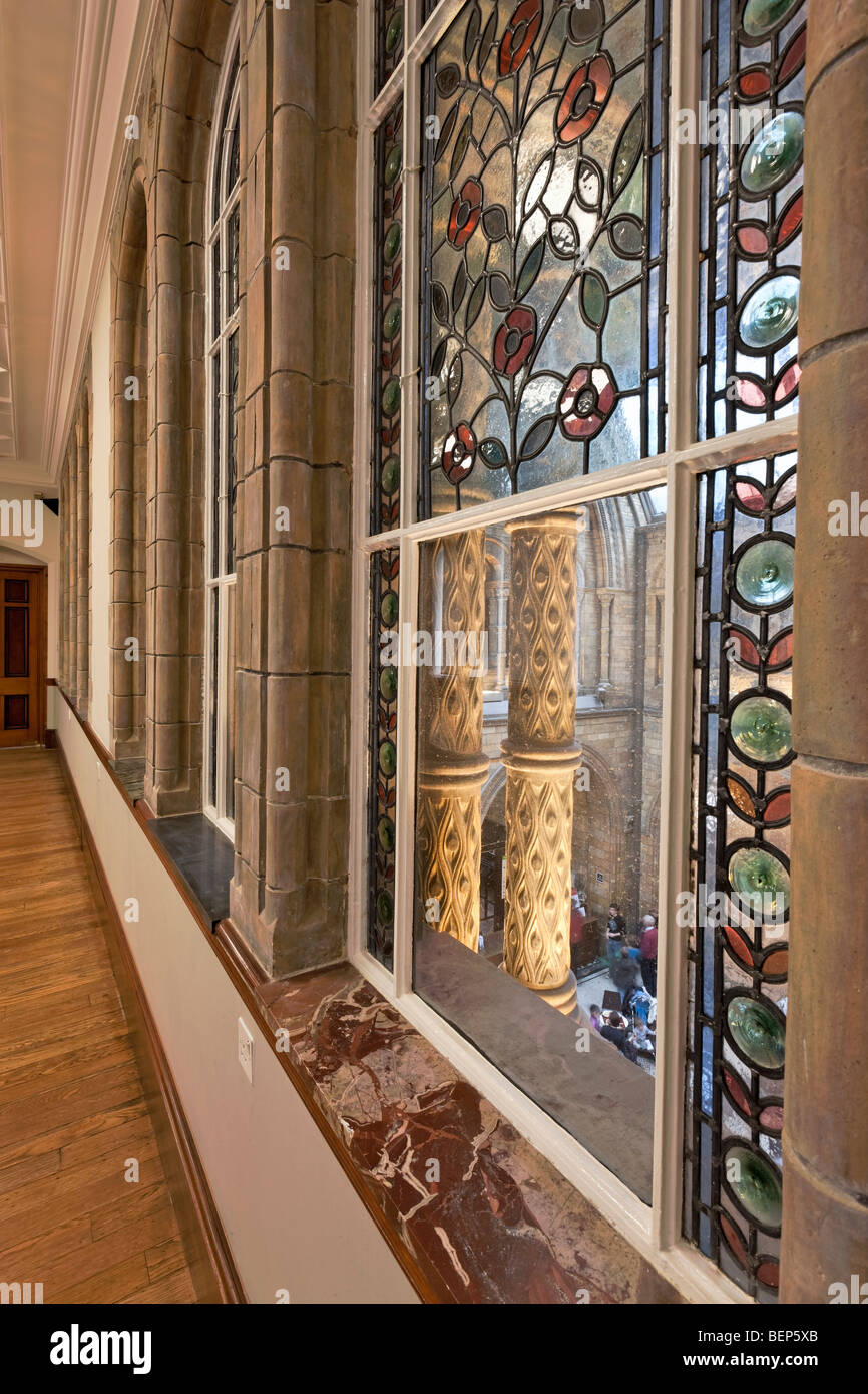 Interior of the Natural History Museum in London. - Stock Image