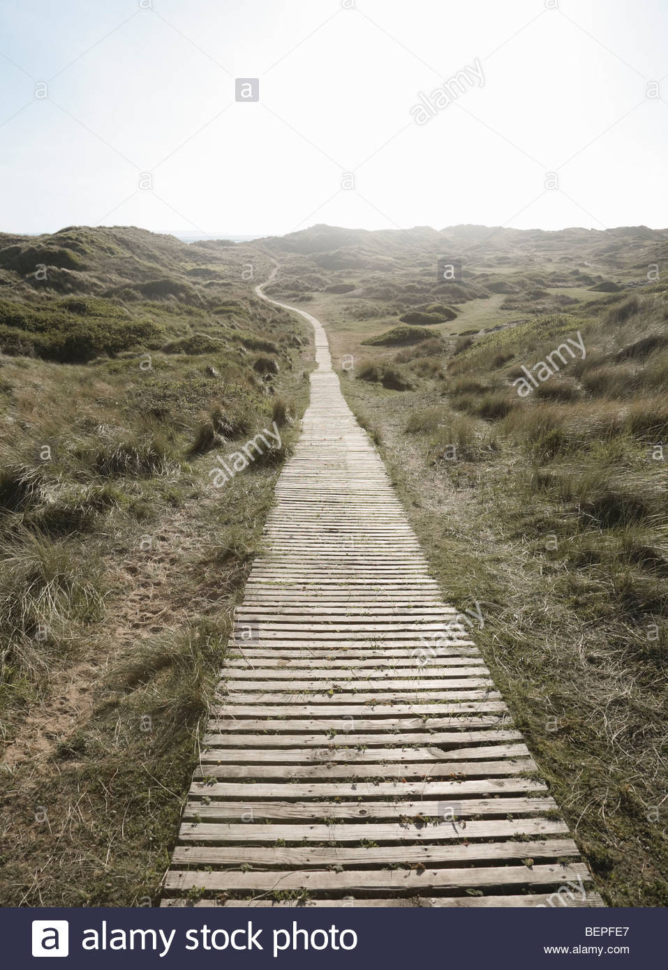 Decking Path winding away - Stock Image