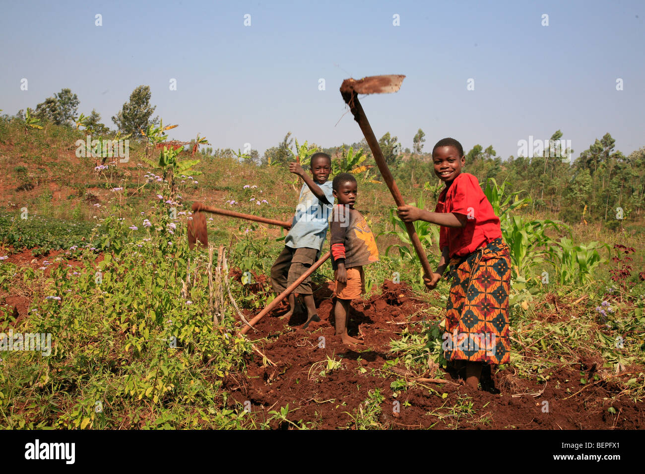 BURUNDI Farmers of Gitega. PHOTOGRAPH by Sean Sprague 2009 - Stock Image