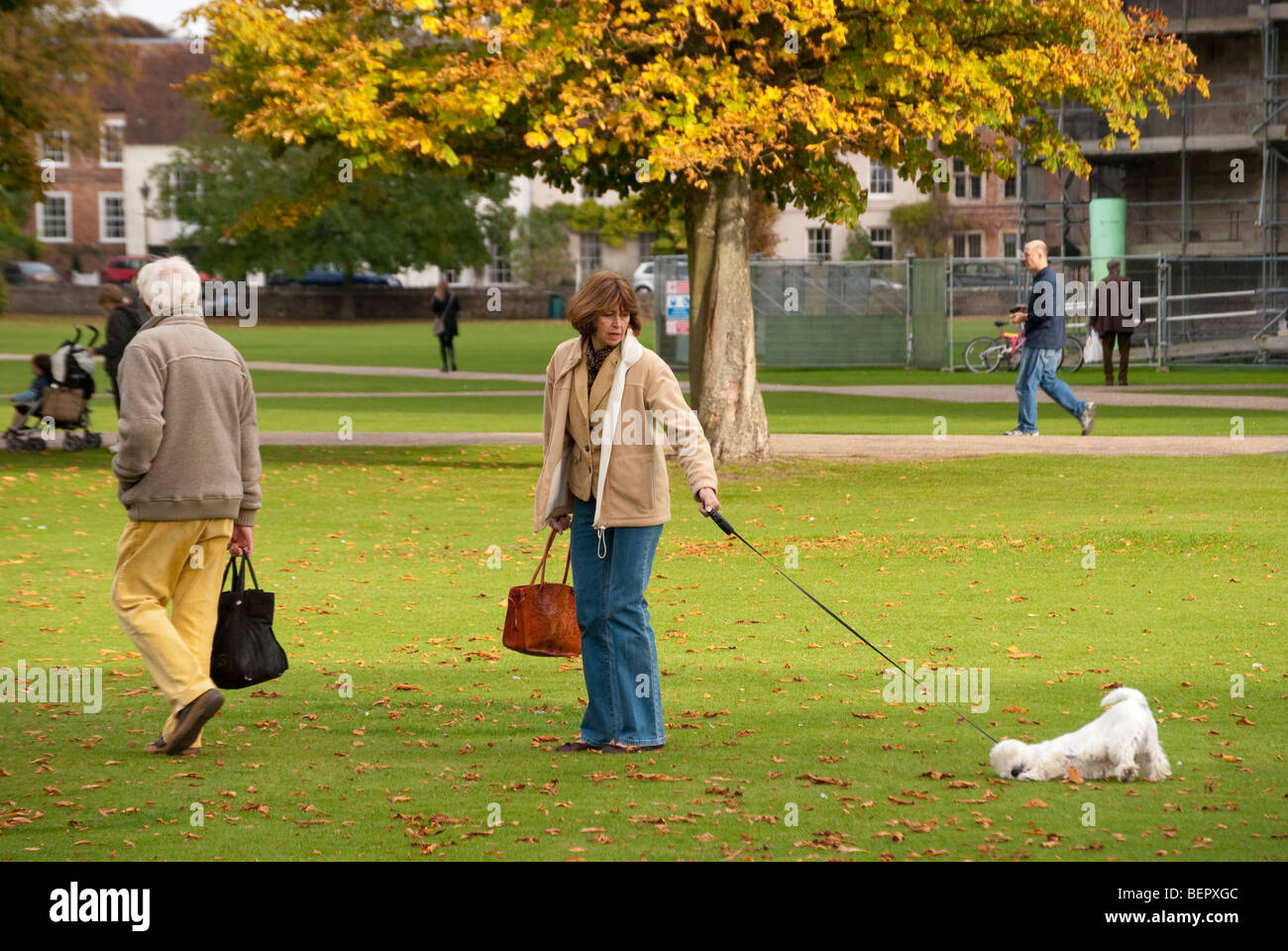 middle aged couple Walking a dog on a long lead in the cathedral close at salisbury - Stock Image