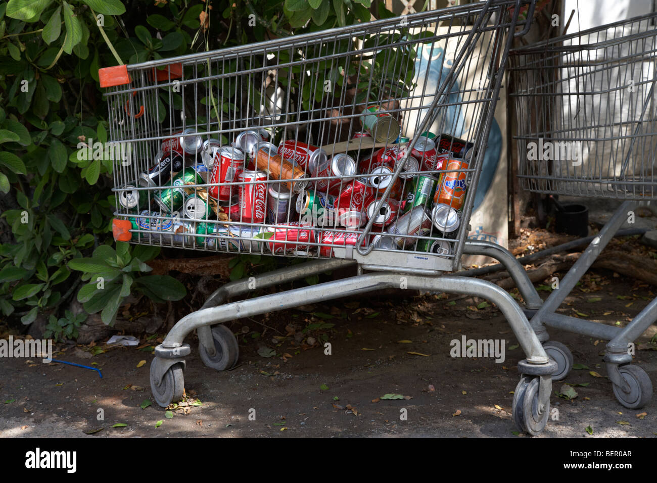 used aluminium cans collected in an old shopping trolley for scrap recycling nicosia lefkosia republic of cyprus - Stock Image