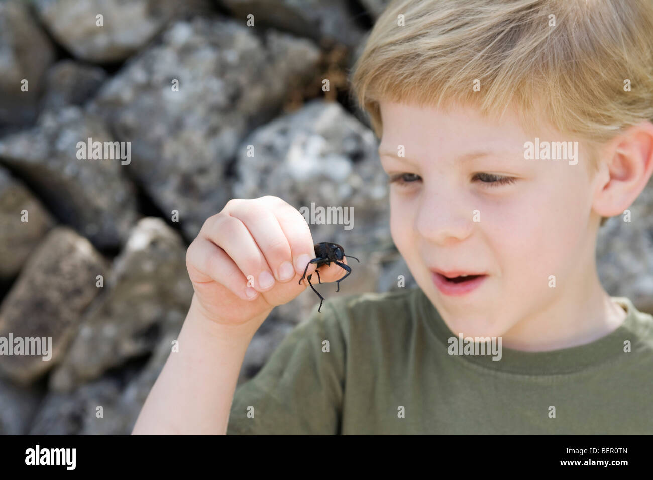 A young boy holding a beetle - Stock Image