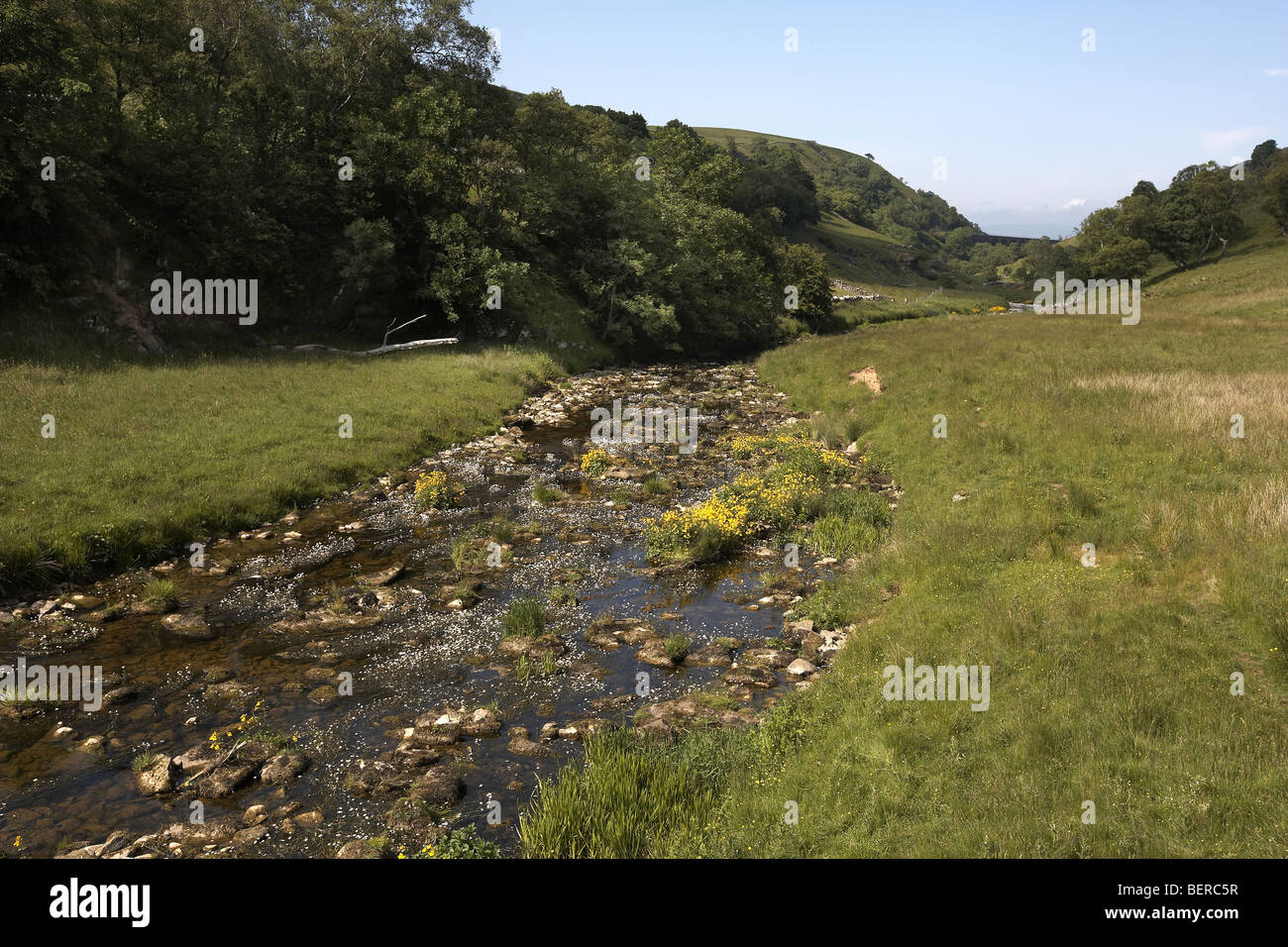 Scandal Beck flowing through Smaedale Gill National Nature Reserve Cumbria, UK - Stock Image