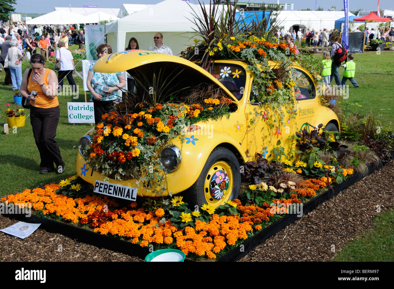 Gold Medal winner 'Perennial Petal Power' at Gardening Scotland 2009, Ingliston, Edinburgh, Scotland, UK. - Stock Image