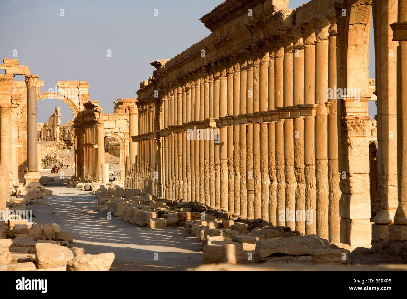 Roman ruins and archaeological site in Palmyra, Syria, Middle East, Asia - Stock Image
