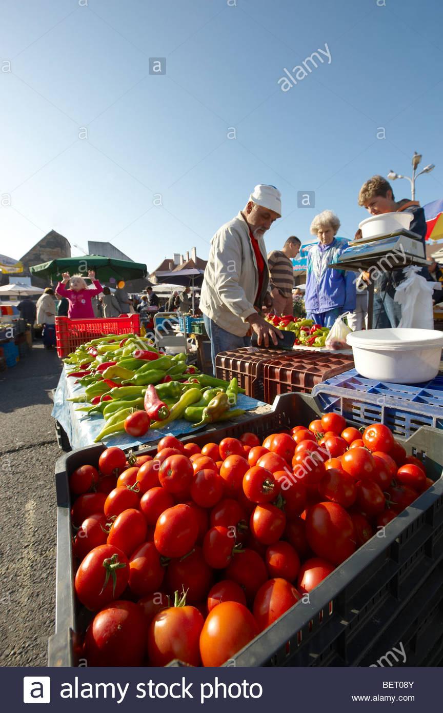 Farmers  market selling tomatoes, Gyor ( Győr ) Hungary - Stock Image