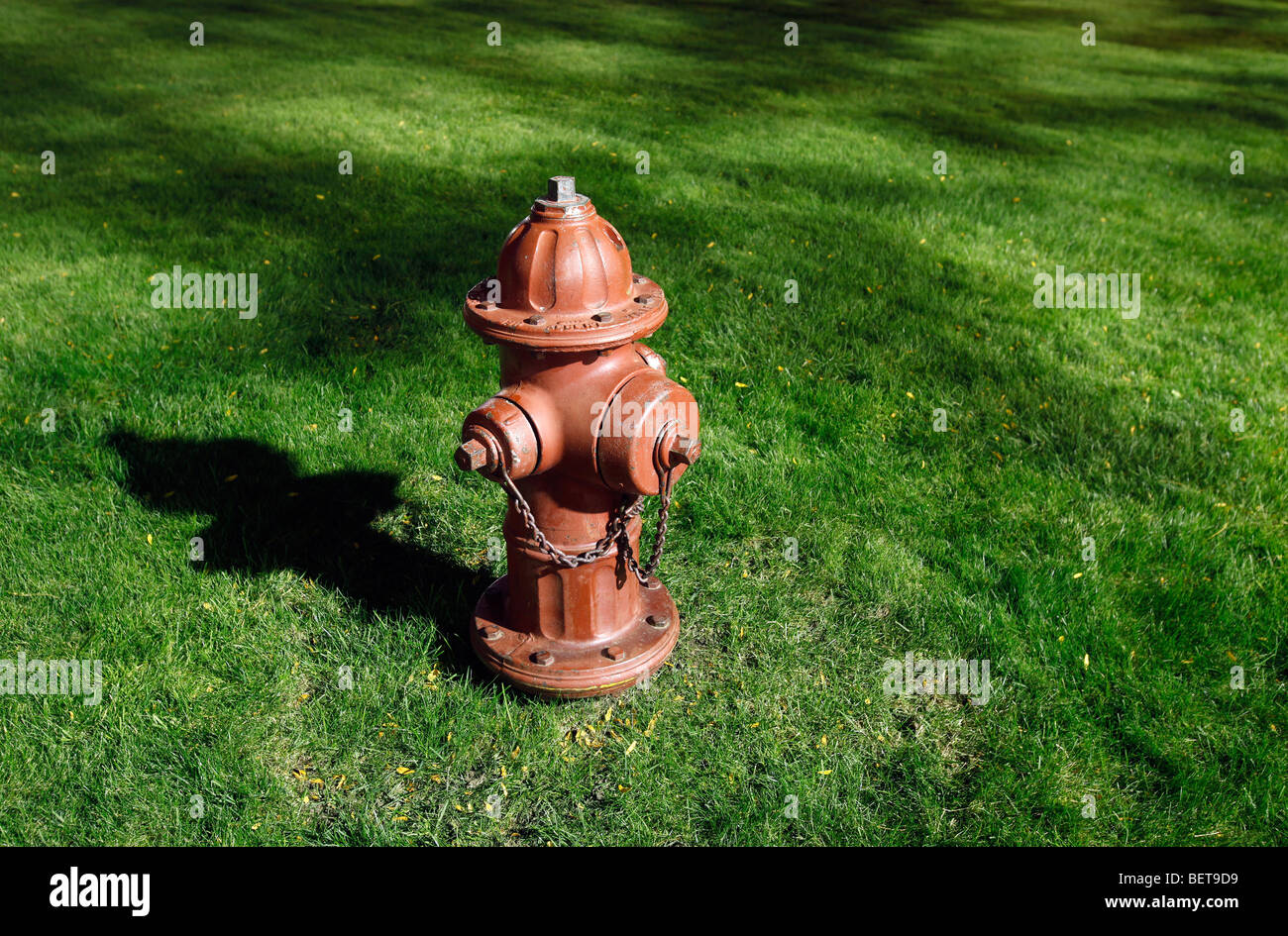 red fire hydrant green lawn - Stock Image