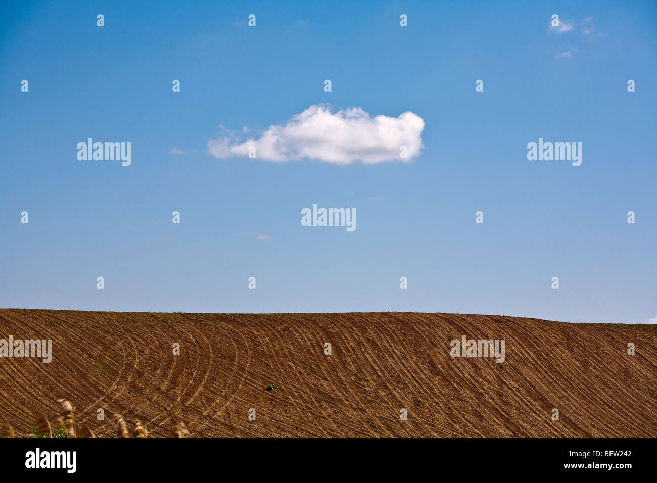 Single white cloud in clear blue sky over a plowed field out in the country side - Stock Image