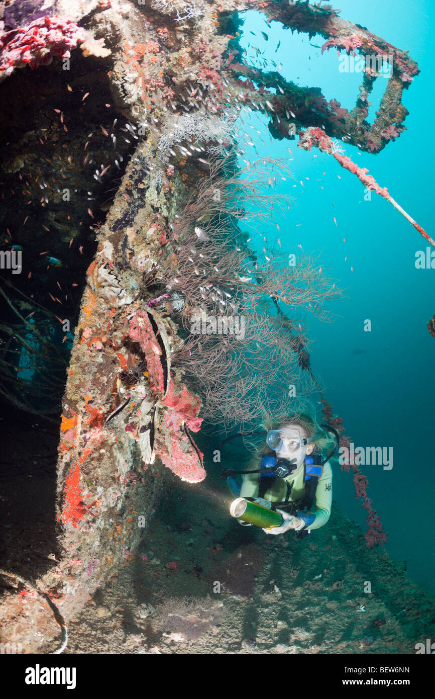 Diver at Kuda Giri Wreck, South Male Atoll, Maldives - Stock Image