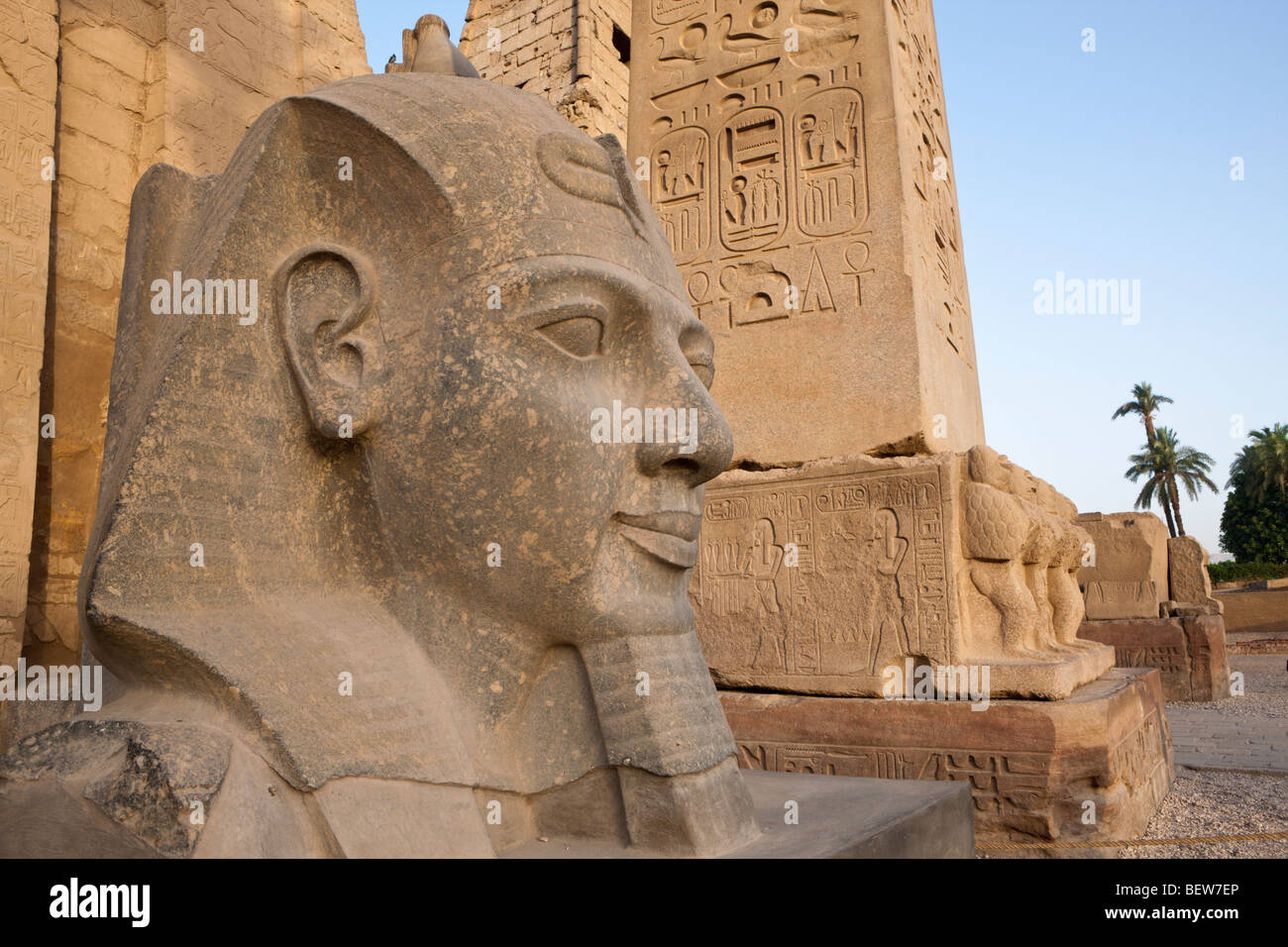 Head of Ramesses II Statue at Luxor Temple, Luxor, Egypt - Stock Image