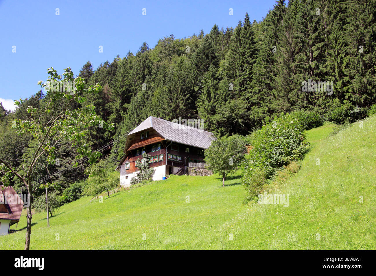 Farmhouse at the Hexenloch, Black Forest, Baden-Wurttemburg, Germany Stock Photo