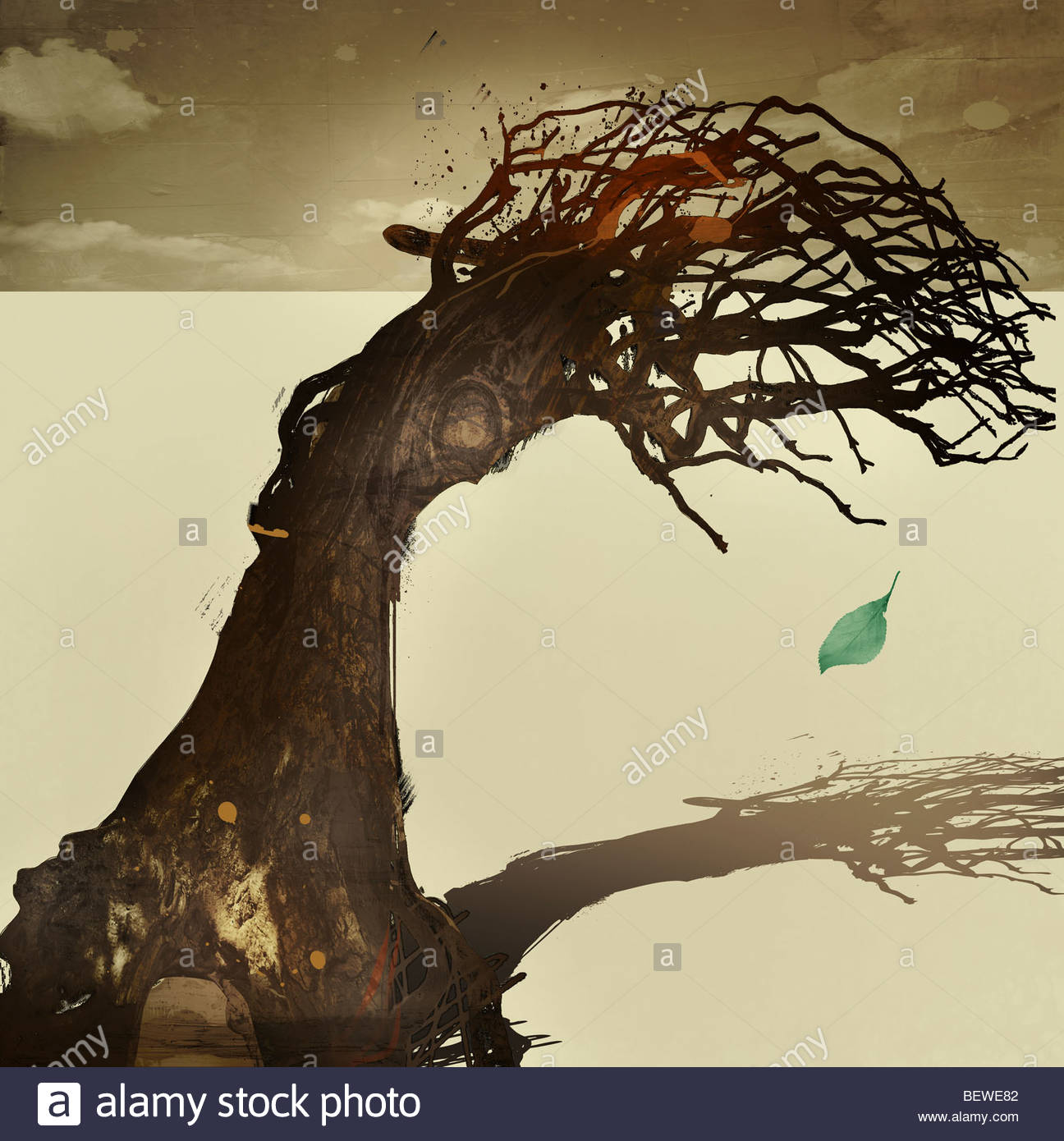 Dead tree with green leaf dropping from it - Stock Image