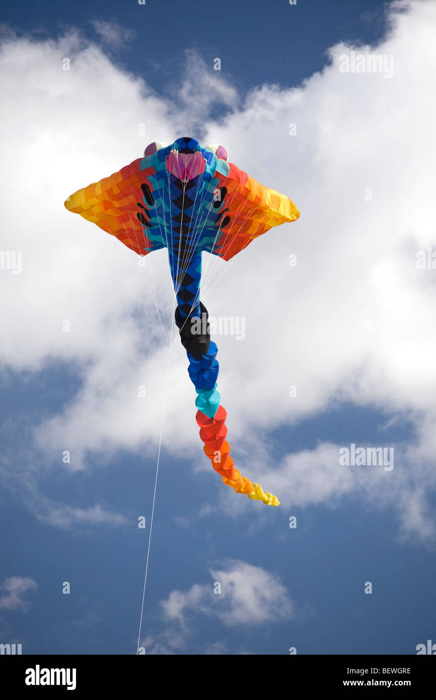 A flying kite at the time of the 'Cervolix' Air Festival (Auvergne - France). Cerf-volant lors du festival - Stock Image