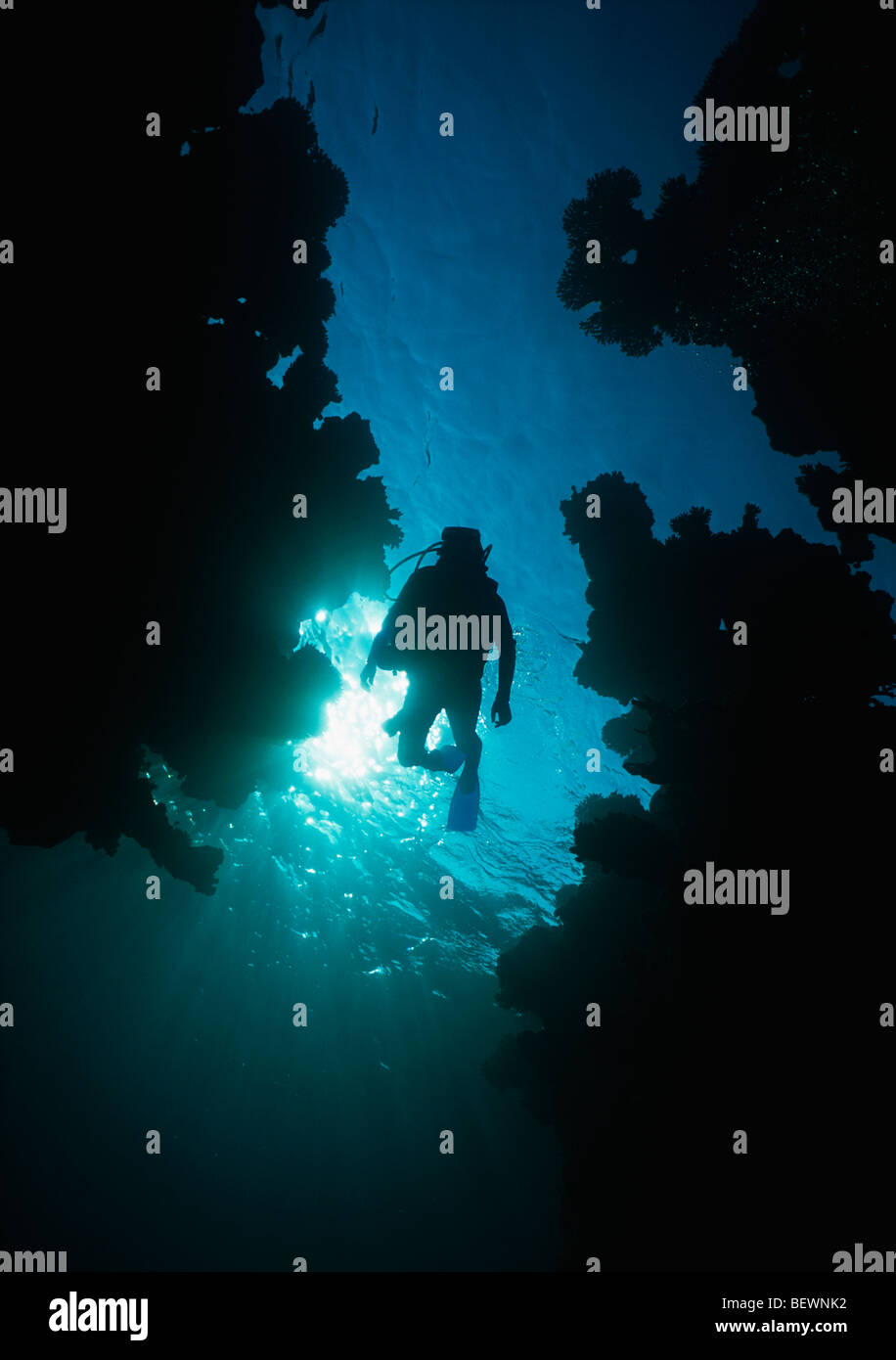 Scuba diver explores cave entrance. Sinai, Egypt - Red Sea - Stock Image