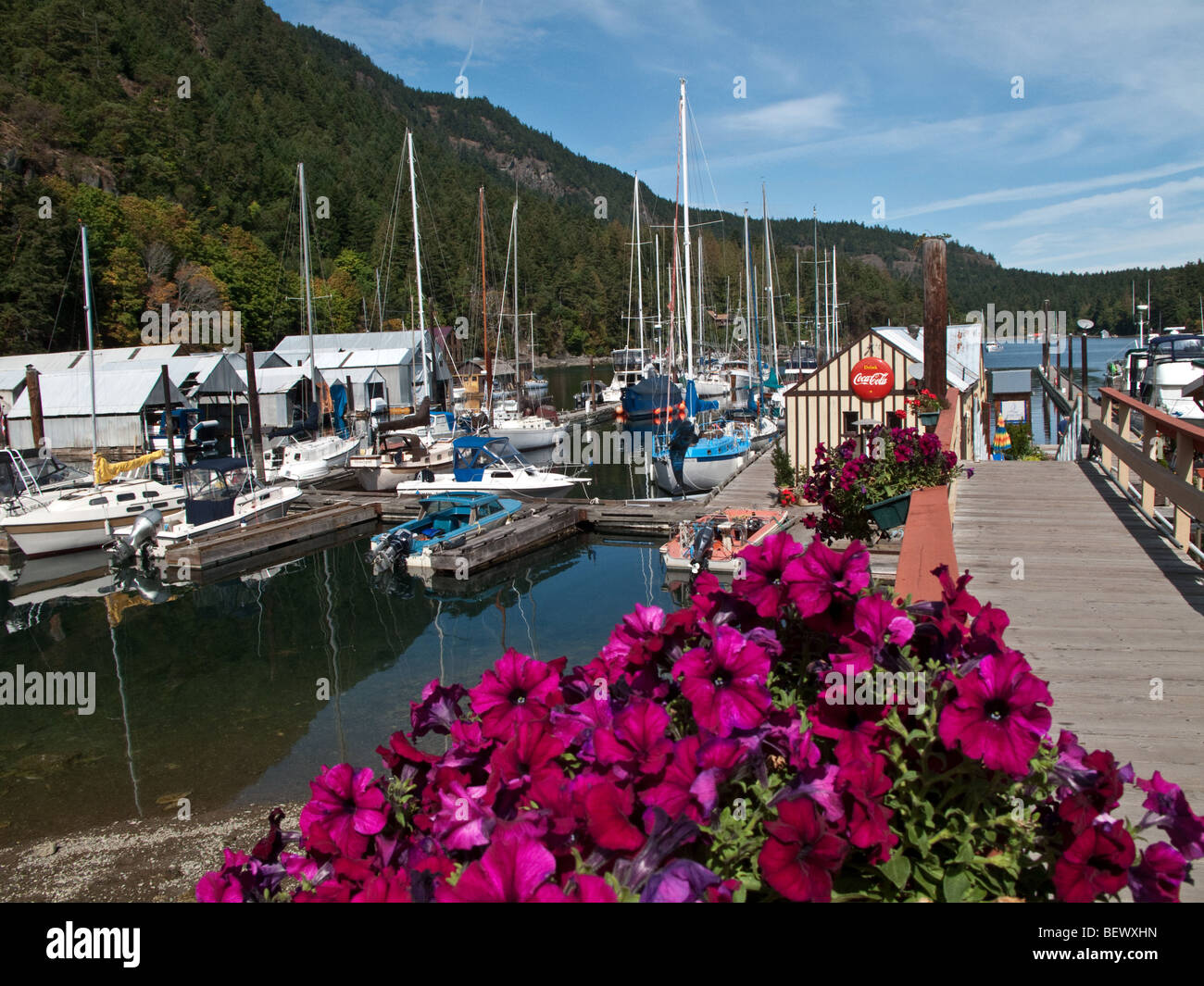 Genoa Bay, Vancouver Island, BC - Stock Image