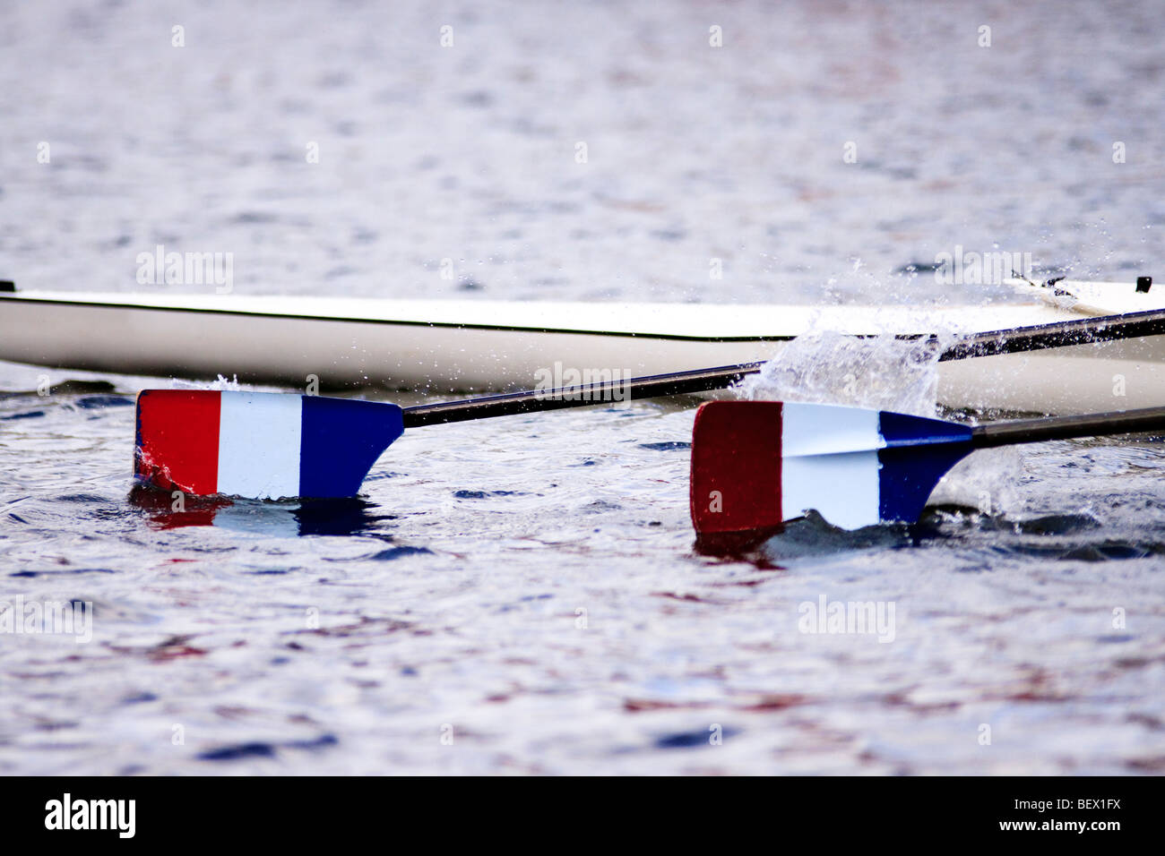 two blades of a racing boat splashing in the water during a rowing event - colours are French flag but reversed - Stock Image