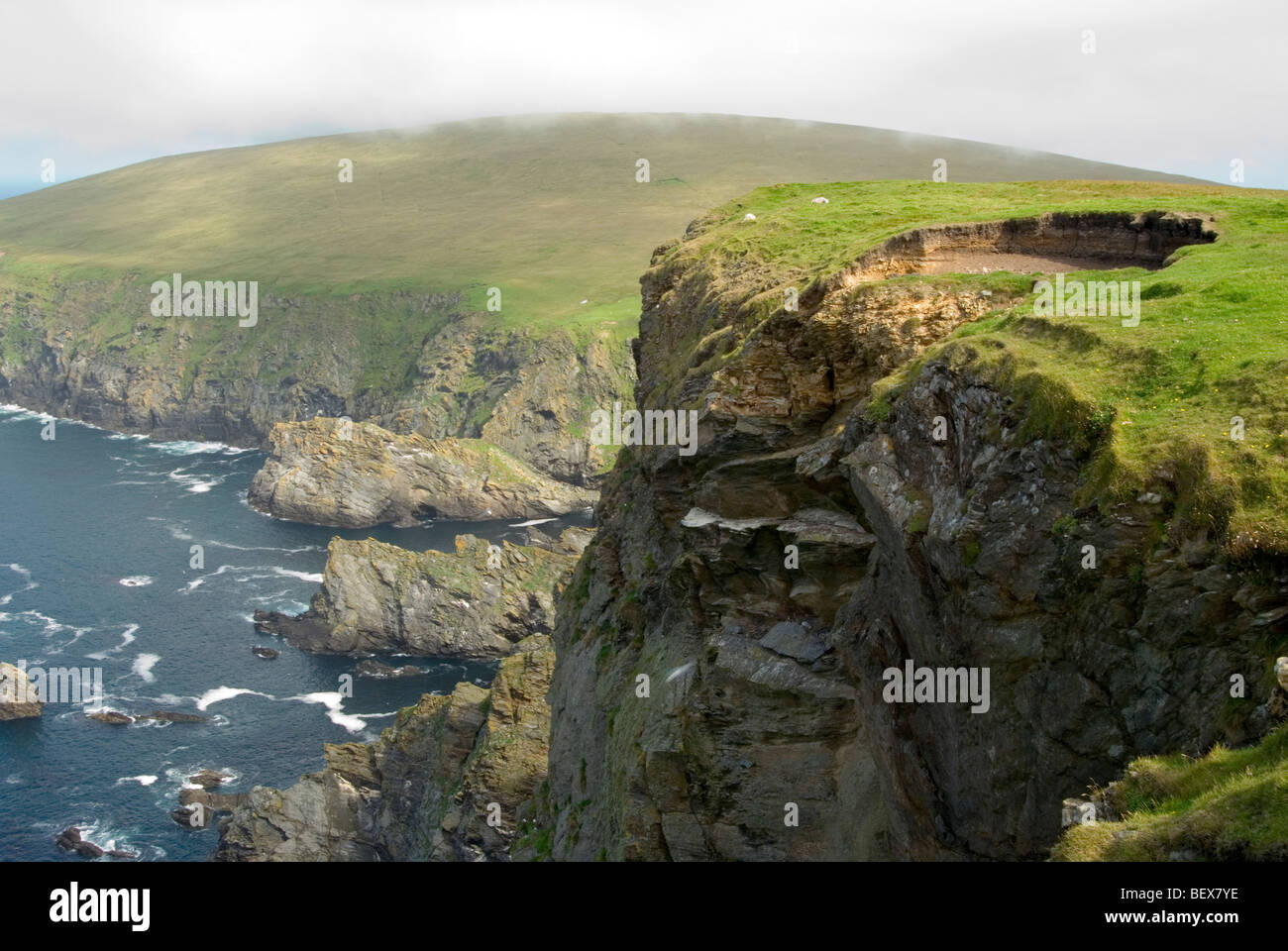 Cliffs in Hermaness National Nature Reserve surrounded by crystal blue water and rocks on North Unst in the Shetland - Stock Image