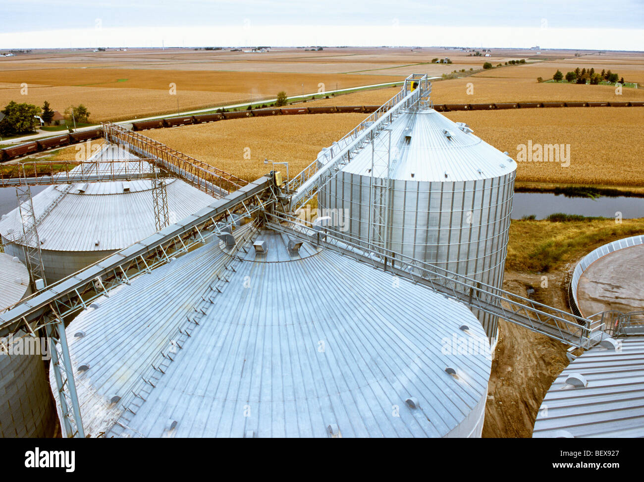 Tops of grain bins with associated conveyors and catwalks