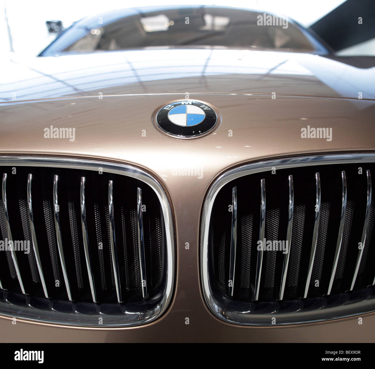 Radiator grille of a BMW Concept X6 - Stock Image