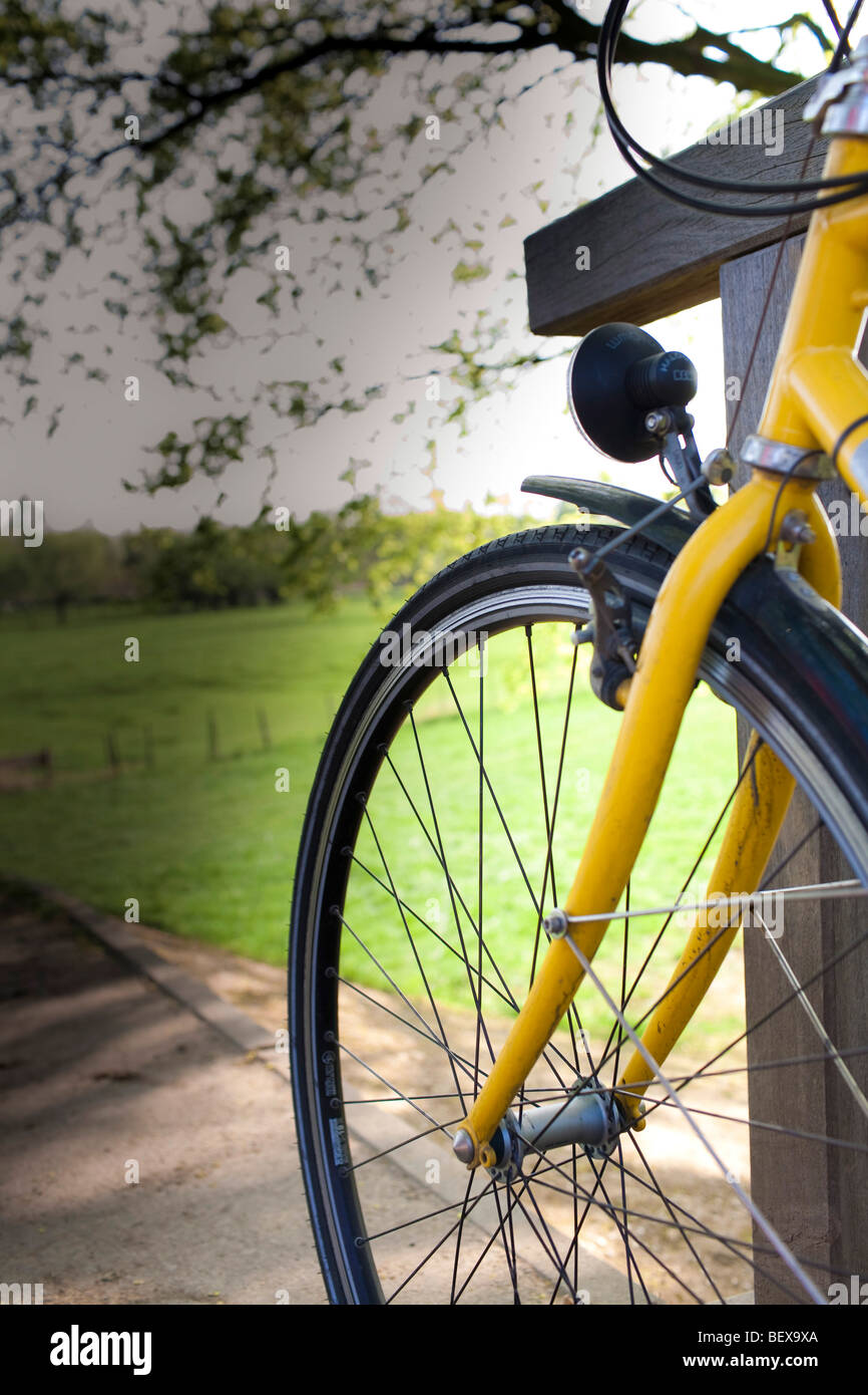 Bike - Stock Image