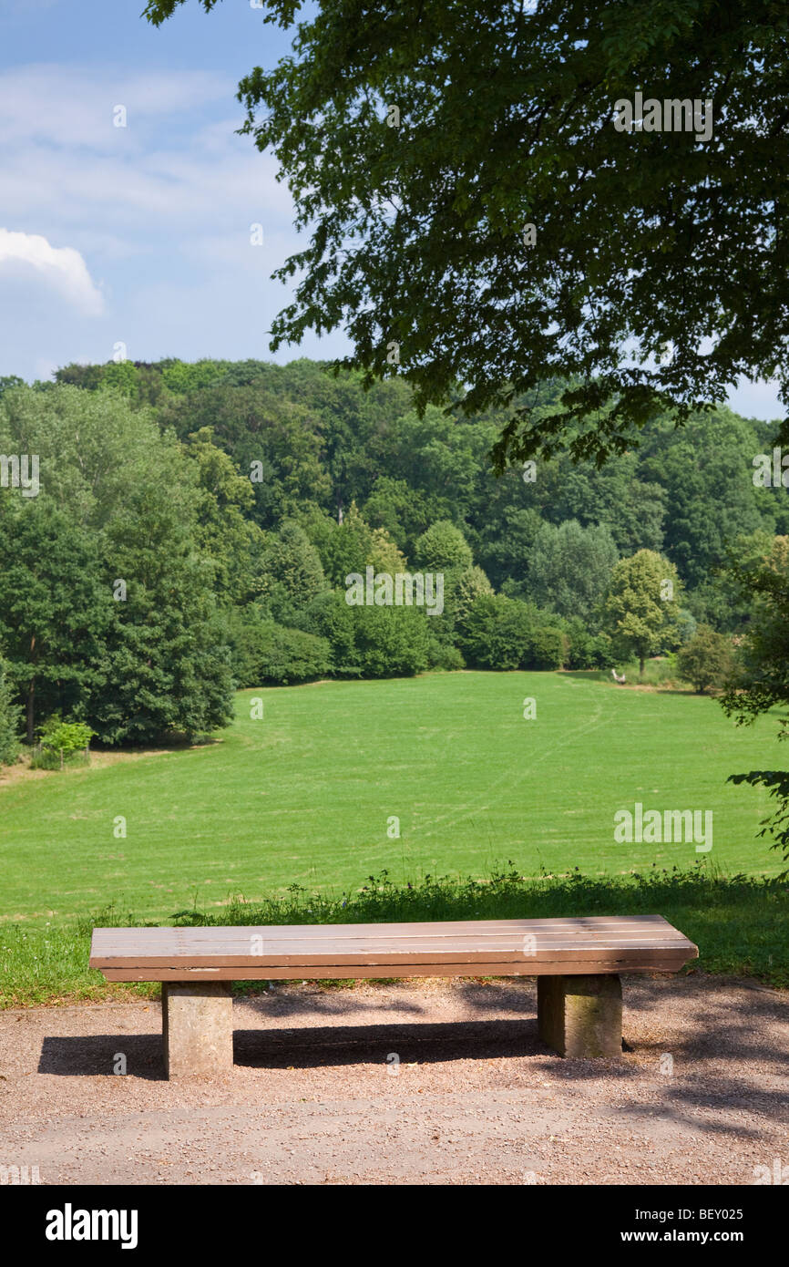Wooden park bench overlooking a field and forest in an urban city park - Stock Image