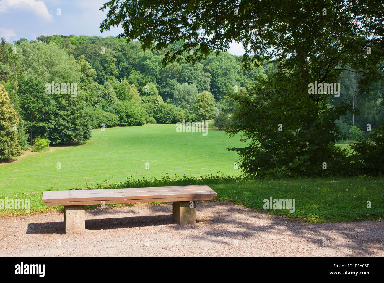 Wooden park bench overlooking a field and forest in an inner city park - Stock Image